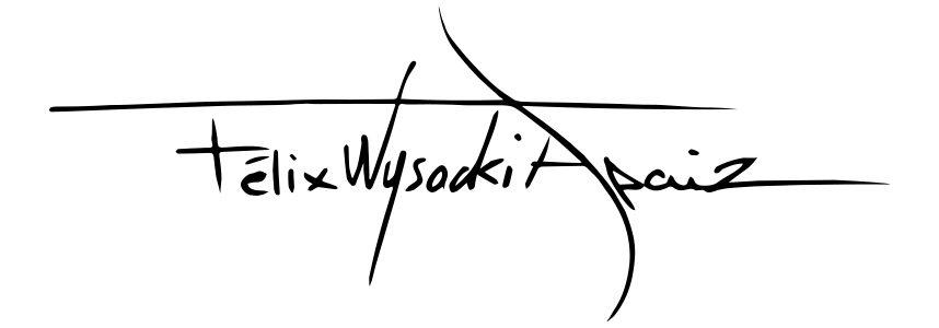 Félix Wysocki Apaiz
